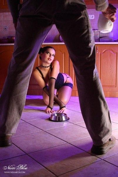 Бдсм мужское доминирование расскаэы читать фото 146-901